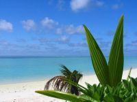 maldivi003