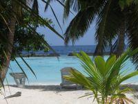 maldivi010